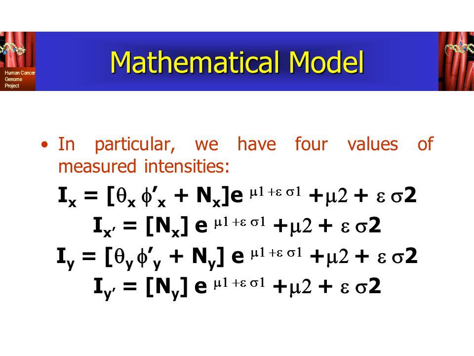 Mathematical Model Ix = [qx f'x + Nx]e m1 +e s1 +m2 + e s2